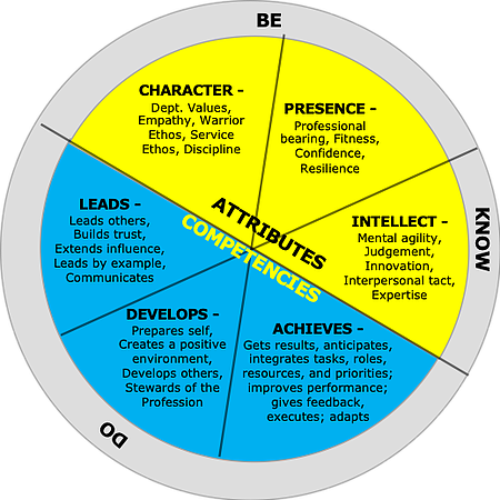 Attritbutes and competencies